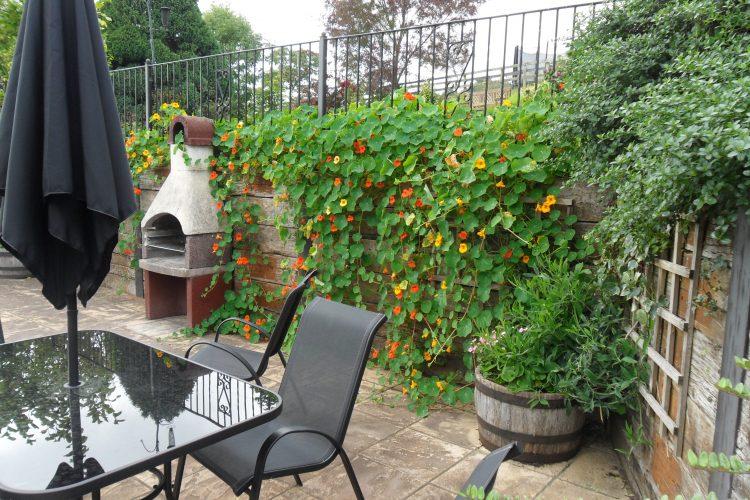 Wisteria cottage patio area