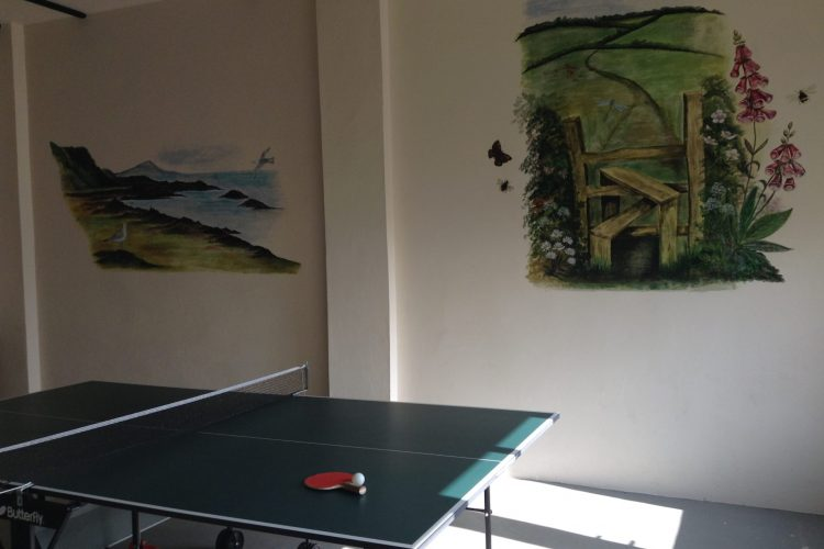 Table tennis at Odle Farm