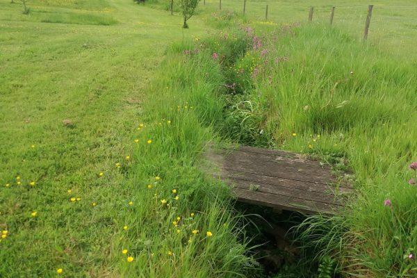 Odle Farm - Gardens and views 14