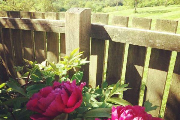 Odle Farm - Gardens and views 21