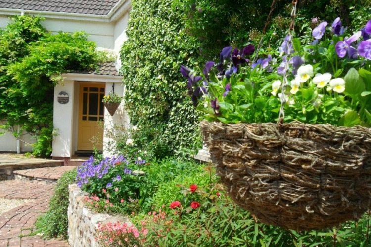 Wisteria cottage front door